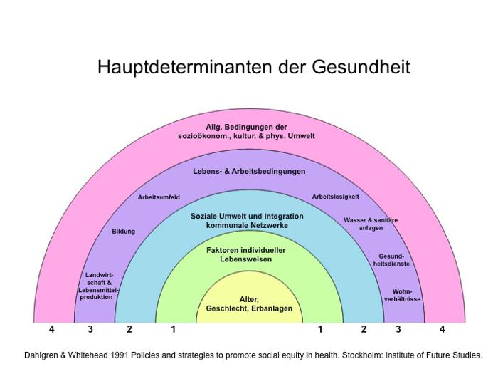 cdc social determinants of health white paper