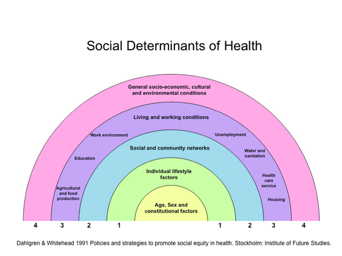 social determinants of health in canada Social determinants of health: the canadian facts by juha mikkonen and dennis raphael foreword by hon monique bégin, former minister of national health & welfare of canada and.